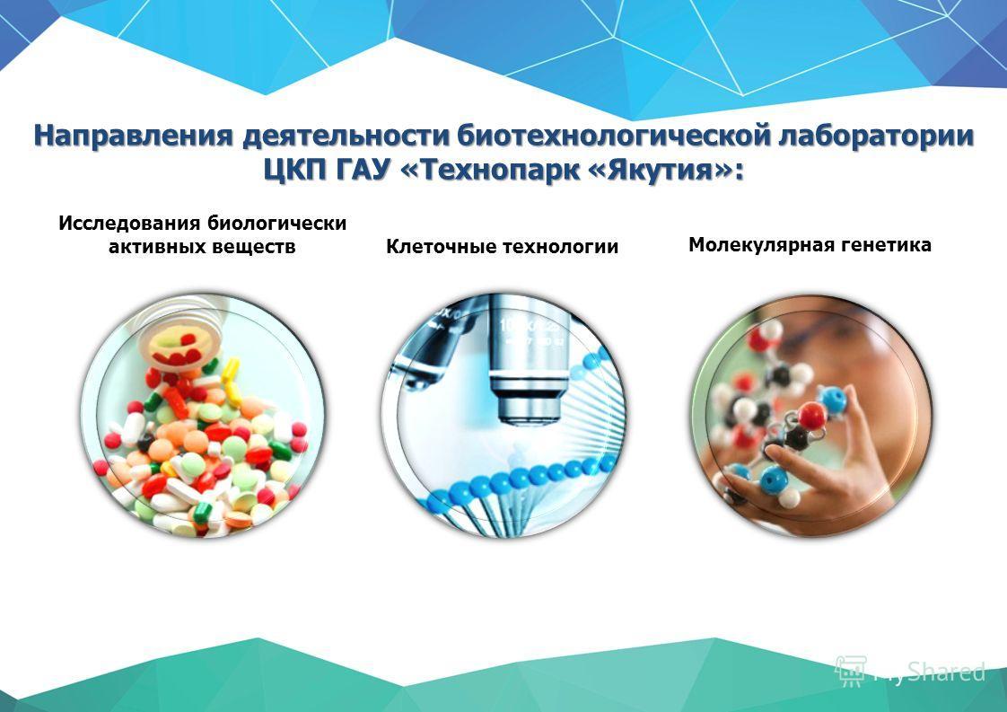 Направления деятельности биотехнологической лаборатории ЦКП ГАУ «Технопарк «Якутия»: Клеточные технологии Исследования биологически активных веществ Молекулярная генетика