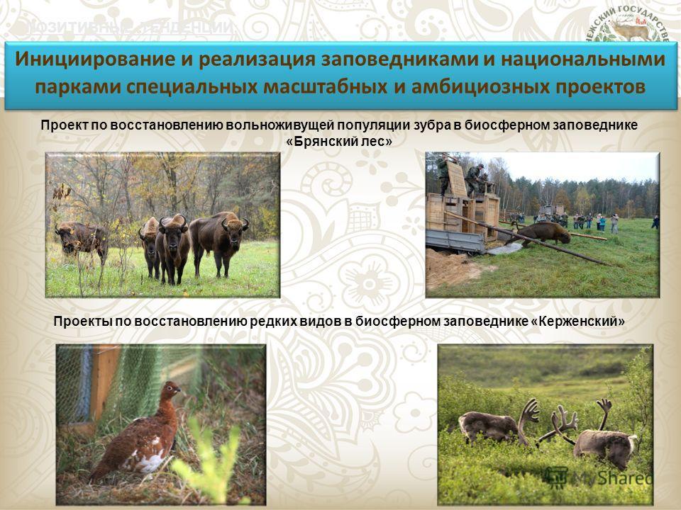 ПОЗИТИВНЫЕ ТЕНДЕНЦИИ: Инициирование и реализация заповедниками и национальными парками специальных масштабных и амбициозных проектов Проекты по восстановлению редких видов в биосферном заповеднике «Керженский» Проект по восстановлению вольноживущей п
