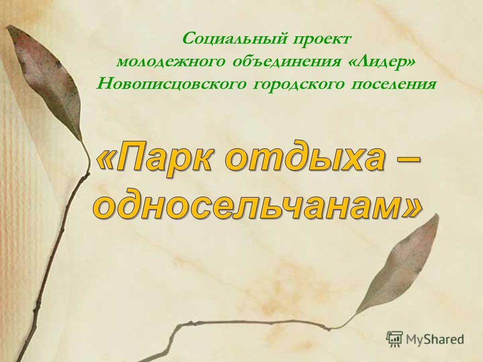 Социальный проект молодежного объединения «Лидер» Новописцовского городского поселения