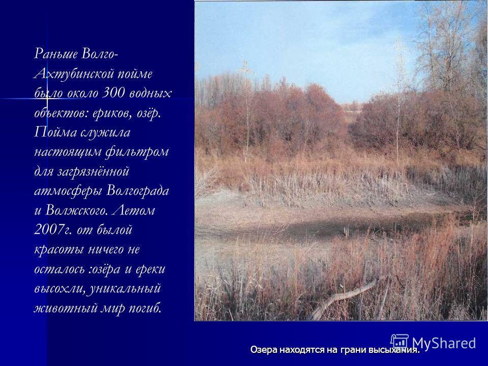 Озера находятся на грани высыхания. Раньше Волго- Ахтубинской пойме было около 300 водных объектов: ериков, озёр. Пойма служила настоящим фильтром для загрязнённой атмосферы Волгограда и Волжского. Летом 2007 г. от былой красоты ничего не осталось :о