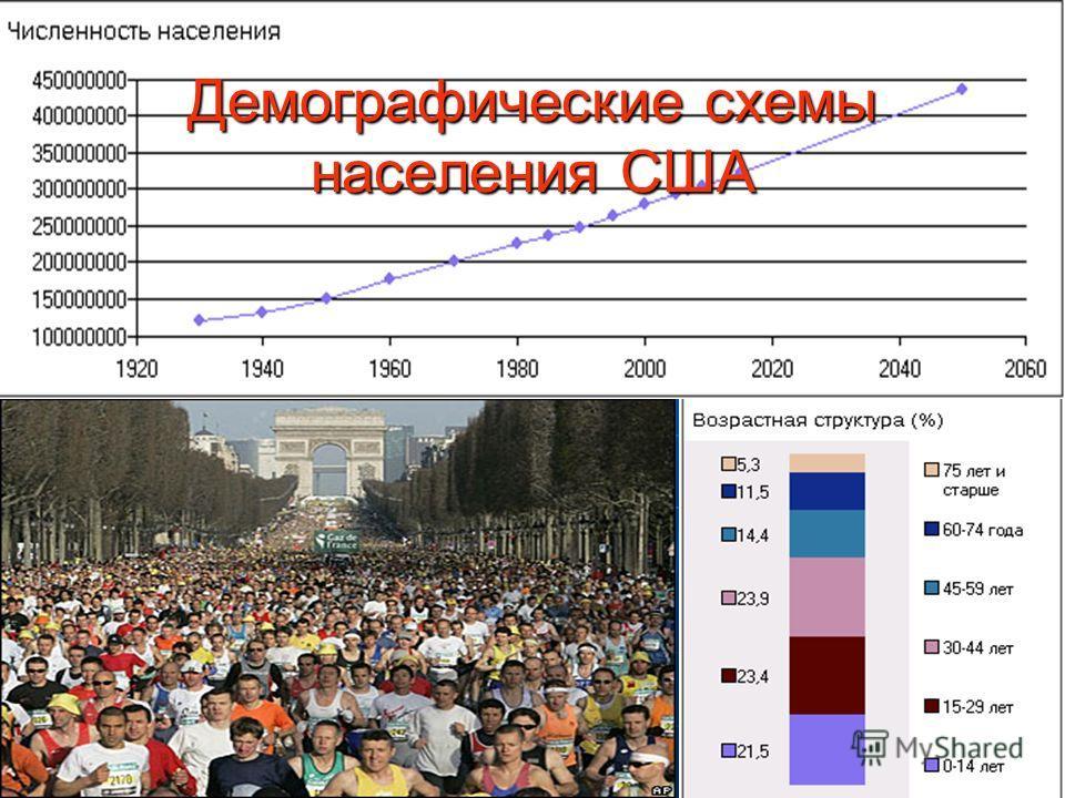 Демографические схемы населения США