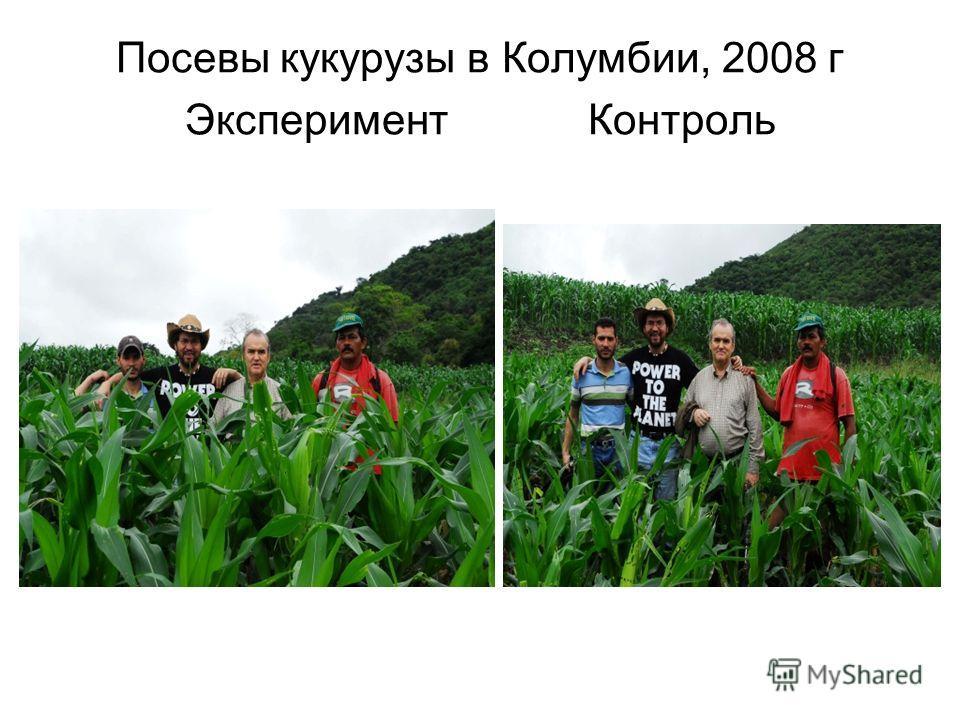 Посевы кукурузы в Колумбии, 2008 г Эксперимент Контроль