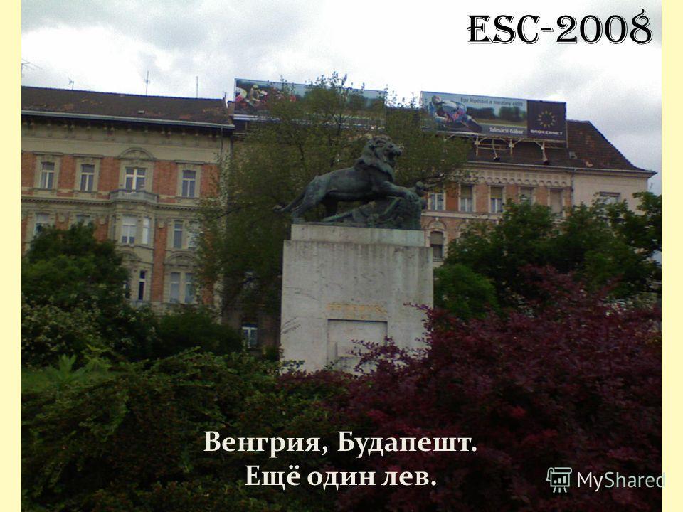 ESC-2008 Венгрия, Будапешт. Ещё один лев.