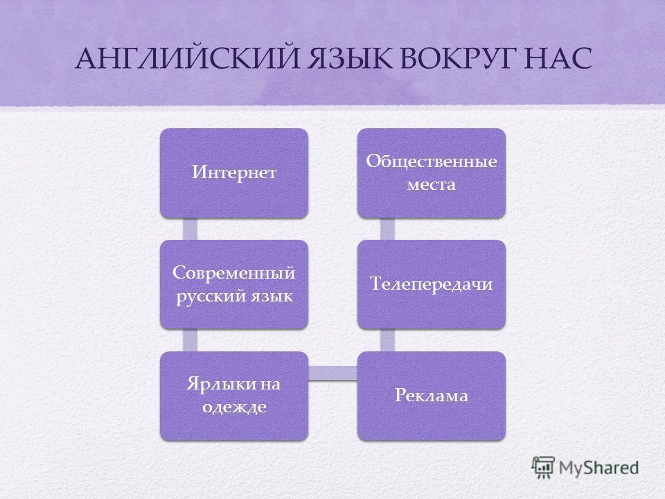 Интернет Современный русский язык Ярлыки на одежде Реклама Телепередачи Общественные места