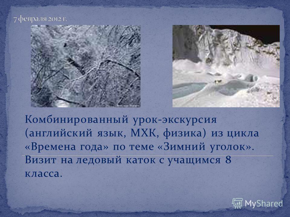 Комбинированный урок-экскурсия (английский язык, МХК, физика) из цикла «Времена года» по теме «Зимний уголок». Визит на ледовый каток с учащимся 8 класса.