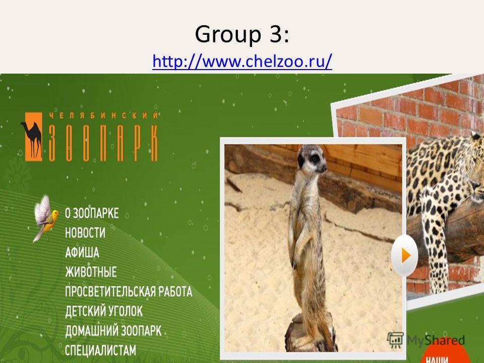 Group 3: http://www.chelzoo.ru/ http://www.chelzoo.ru/