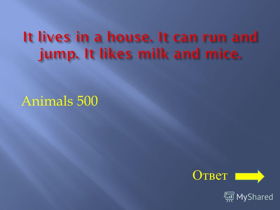 Animals 500 Ответ