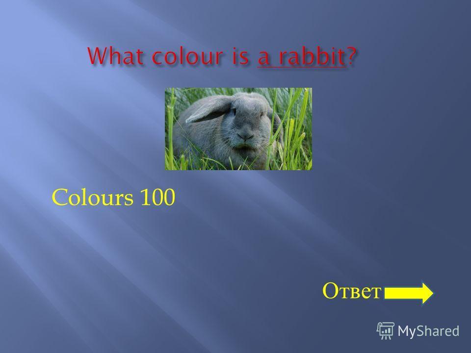 Colours 100 Ответ