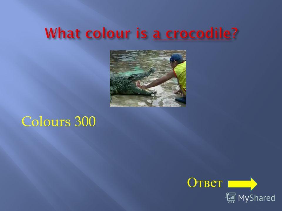 Colours 300 Ответ