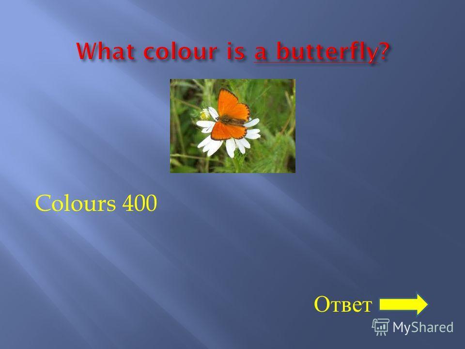 400 ответ слайд 20 назад таблица слайд