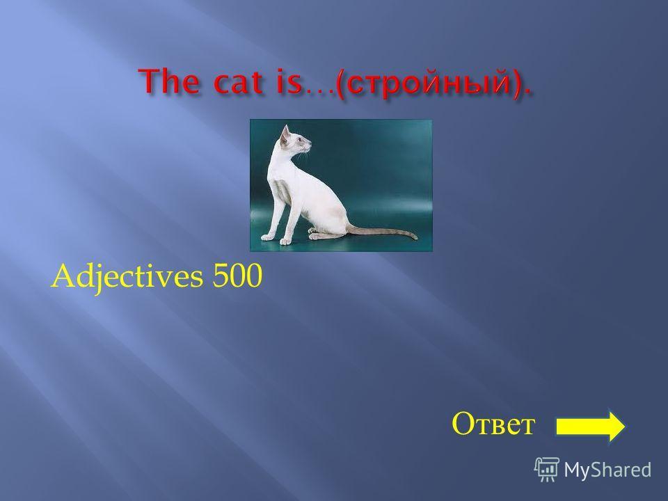 Adjectives 500 Ответ