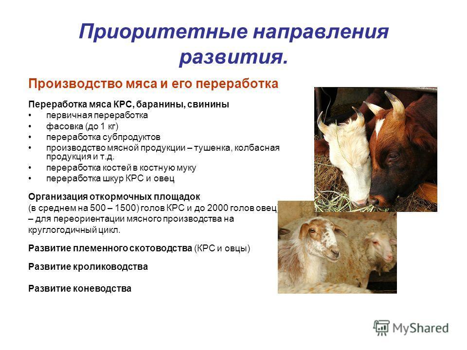 Приоритетные направления развития. Производство мяса и его переработка Переработка мяса КРС, баранины, свинины первичная переработка фасовка (до 1 кг) переработка субпродуктов производство мясной продукции – тушенка, колбасная продукция и т.д. перера