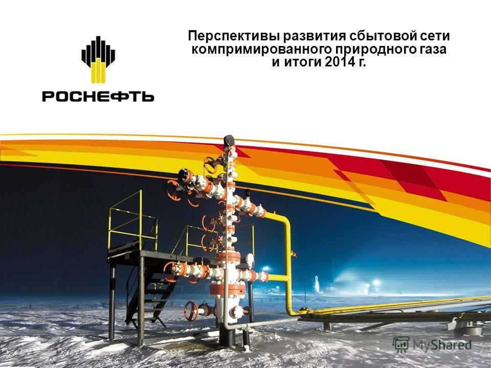 Перспективы развития сбытовой сети компримированного природного газа и итоги 2014 г.