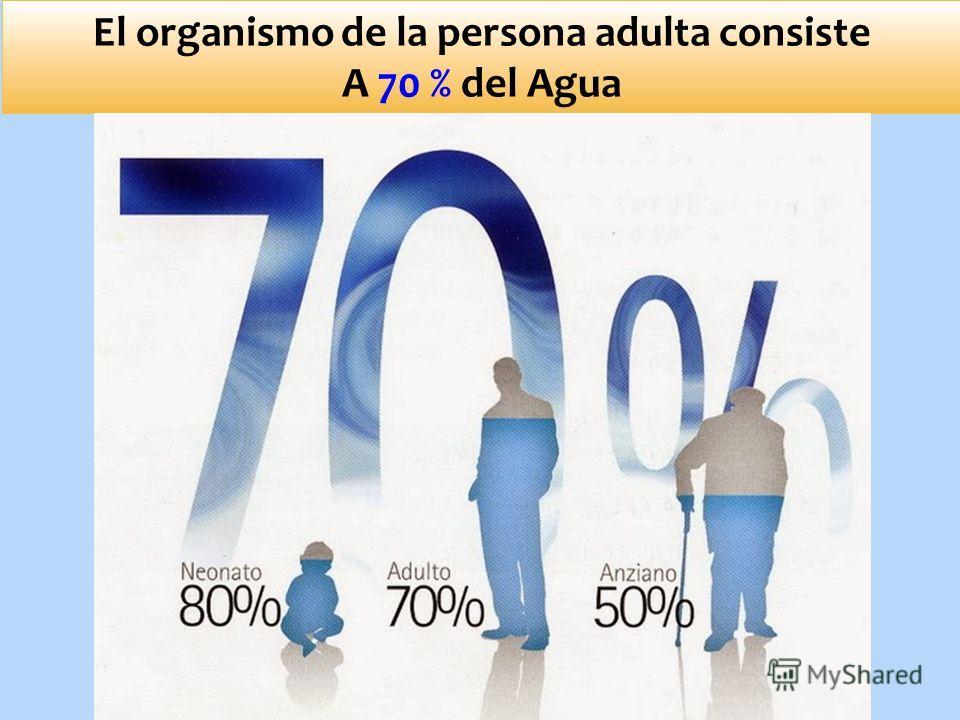 El organismo de la persona adulta consiste A 70 % del Agua
