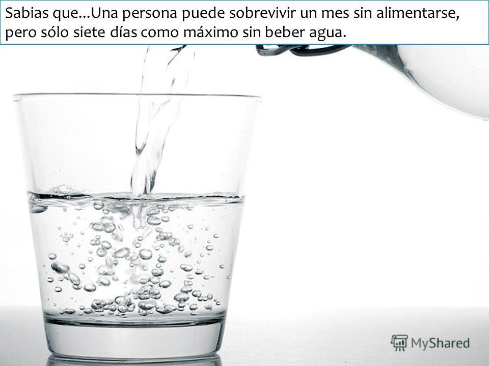 Sabias que...Una persona puede sobrevivir un mes sin alimentarse, pero sólo siete días como máximo sin beber agua.