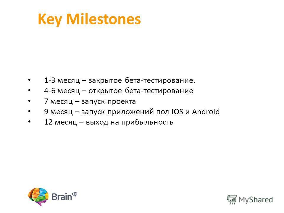 Key Milestones 1-3 месяц – закрытое бета-тестирование. 4-6 месяц – открытое бета-тестирование 7 месяц – запуск проекта 9 месяц – запуск приложений пол iOS и Android 12 месяц – выход на прибыльность