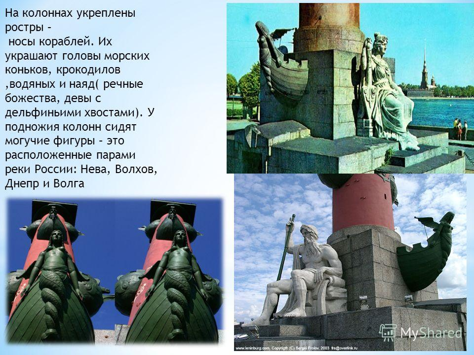 На колоннах укреплены ростры – носы кораблей. Их украшают головы морских коньков, крокодилов,водяных и наяд( речные божества, девы с дельфиньими хвостами). У подножия колонн сидят могучие фигуры – это расположенные парами реки России: Нева, Волхов, Д