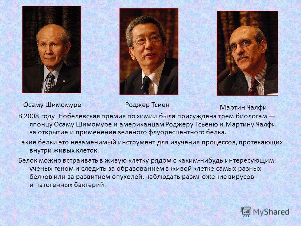 В 2008 году Нобелевская премия по химии была присуждена трём биологам японцу Осаму Шимомуре и американцам Роджеру Тсьеню и Мартину Чалфи за открытие и применение зелёного флуоресцентного белка. Такие белки это незаменимый инструмент для изучения проц