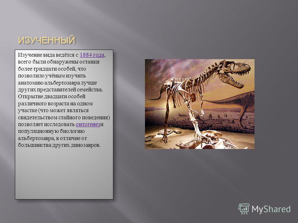 ИЗУЧЕННЫЙ Изучение вида ведётся с 1884 года, всего были обнаружены останки более тридцати особей, что позволило учёным изучить анатомию альбертозавра лучше других представителей семейства. Открытие двадцати особей различного возраста на одном участке