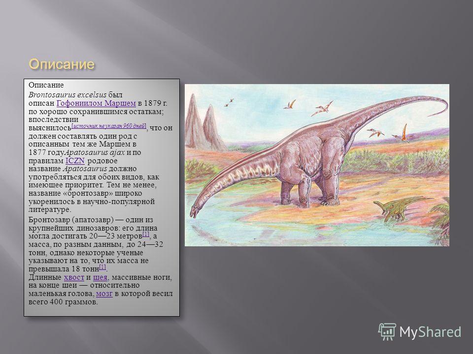 Описание Описание Brontosaurus excelsus был описан Гофониилом Маршем в 1879 г. по хорошо сохранившимся остаткам; впоследствии выяснилось [ источник не указан 960 дней ], что он должен составлять один род с описанным тем же Маршем в 1877 году Apatosau