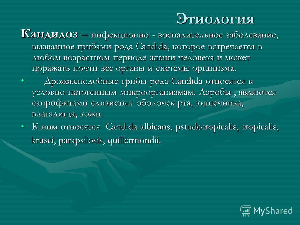 Этиология Кандидоз – инфекционно - воспалительное заболевание, вызванное грибами рода Candida, которое встречается в любом возрастном периоде жизни человека и может поражать почти все органы и системы организма. Дрожжеподобные грибы рода Candida отно