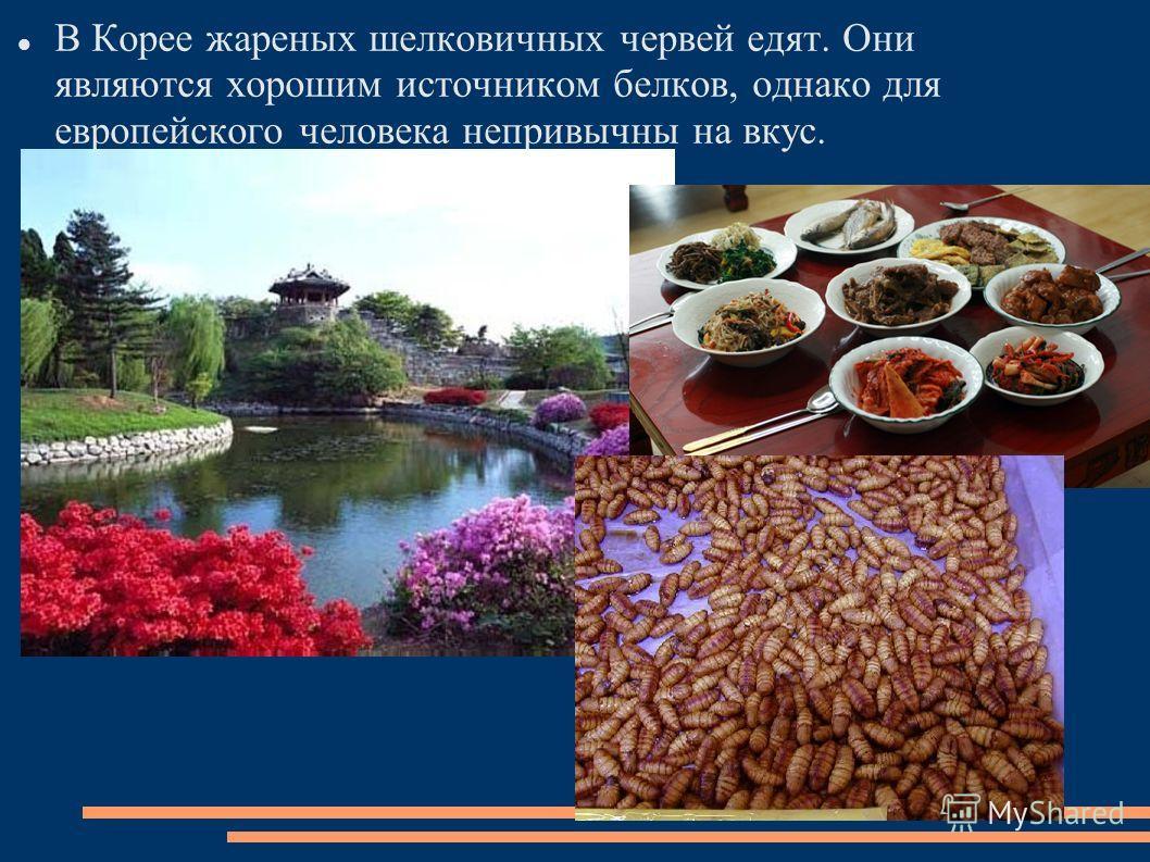 В Корее жареных шелковичных червей едят. Они являются хорошим источником белков, однако для европейского человека непривычны на вкус.
