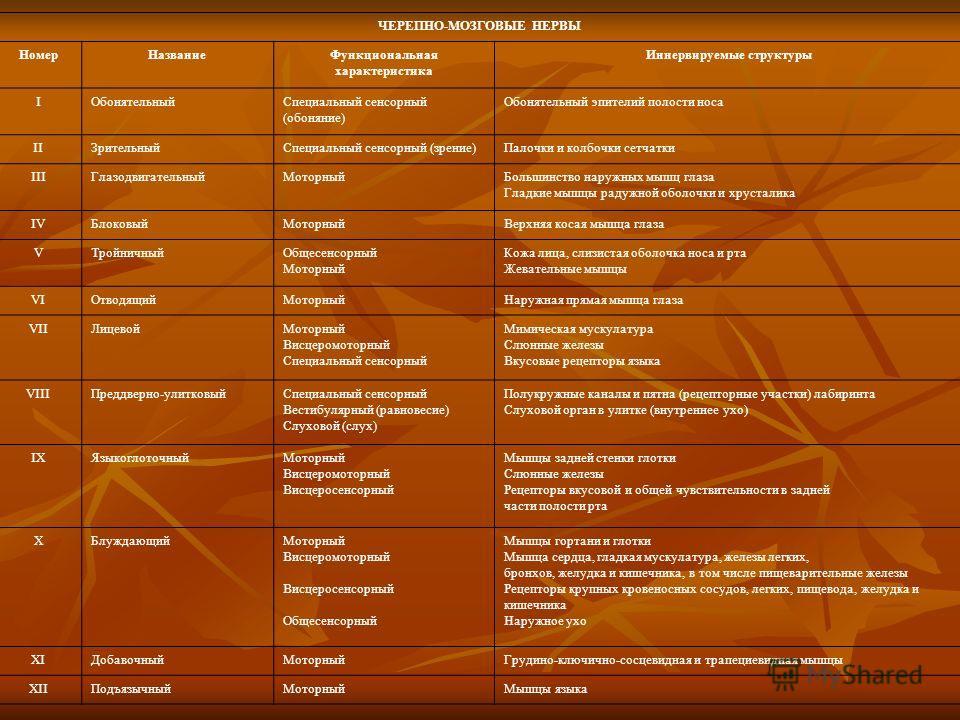 ЧЕРЕПНО-МОЗГОВЫЕ НЕРВЫ Номер НазваниеФункциональная характеристика Иннервируемые структуры I Обонятельный Специальный сенсорный (обоняние) Обонятельный эпителий полости носа II Зрительный Специальный сенсорный (зрение)Палочки и колбочки сетчатки III