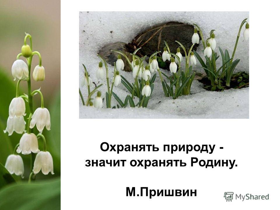 Охранять природу - значит охранять Родину. М.Пришвин