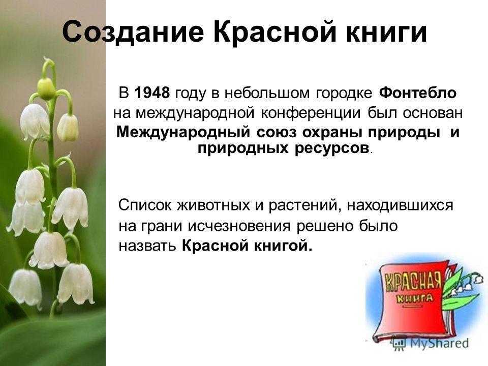 Создание Красной книги В 1948 году в небольшом городке Фонтебло на международной конференции был основан Международный союз охраны природы и природных ресурсов. Список животных и растений, находившихся на грани исчезновения решено было назвать Красно