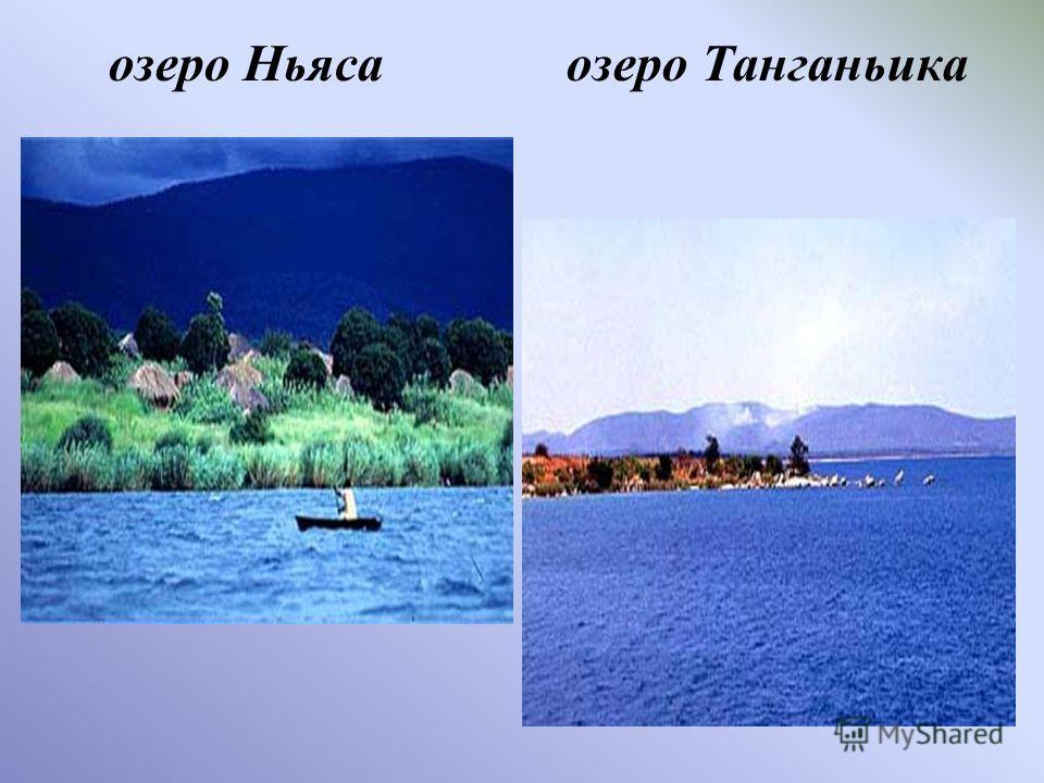 озеро Ньяса озеро Танганьика