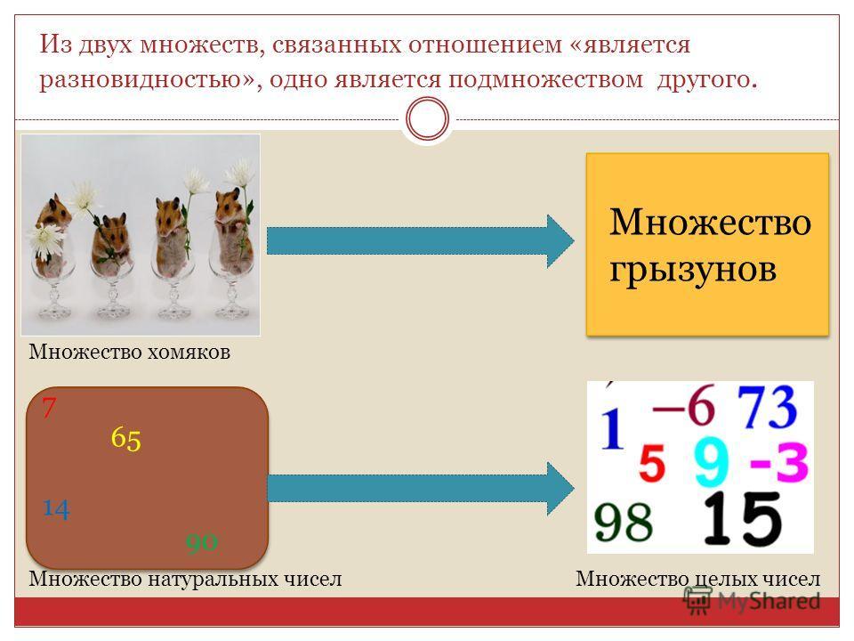 Из двух множеств, связанных отношением «является разновидностью», одно является подмножеством другого. Множество хомяков Множество грызунов 7 65 14 90 Множество натуральных чисел Множество целых чисел