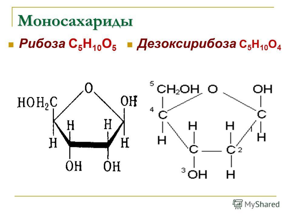 Моносахариды Рибоза С 5 Н 10 О 5 Дезоксирибоза С 5 Н 10 О 4