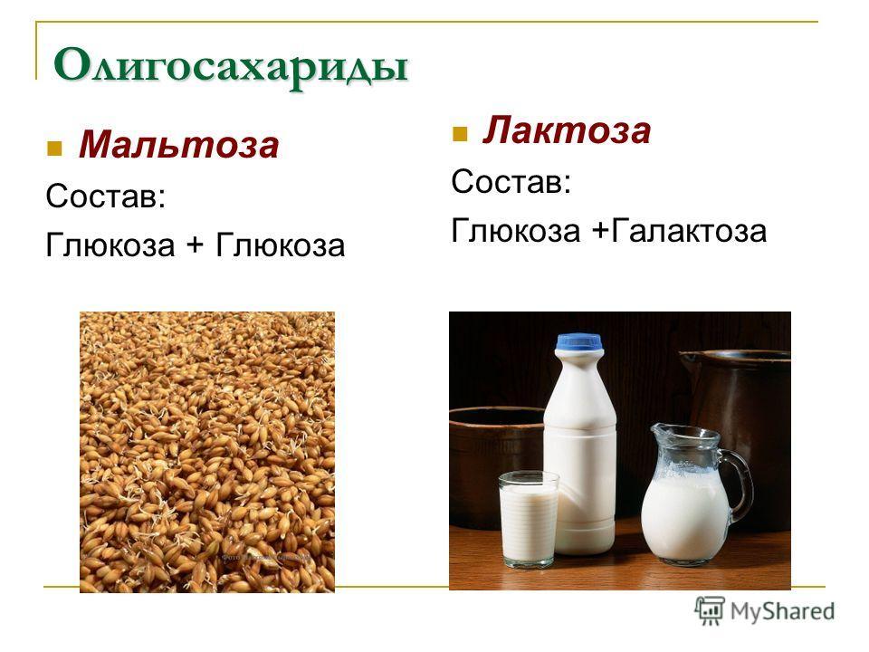 Олигосахариды Мальтоза Состав: Глюкоза + Глюкоза Лактоза Состав: Глюкоза +Галактоза
