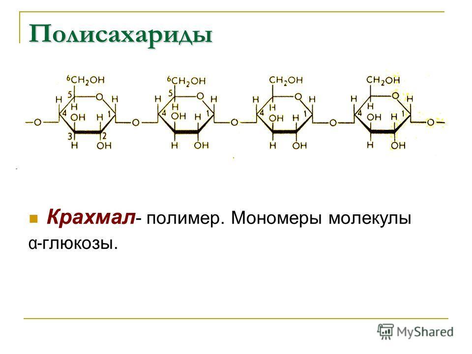 Крахмал - полимер. Мономеры молекулы α- глюкозы. Полисахариды