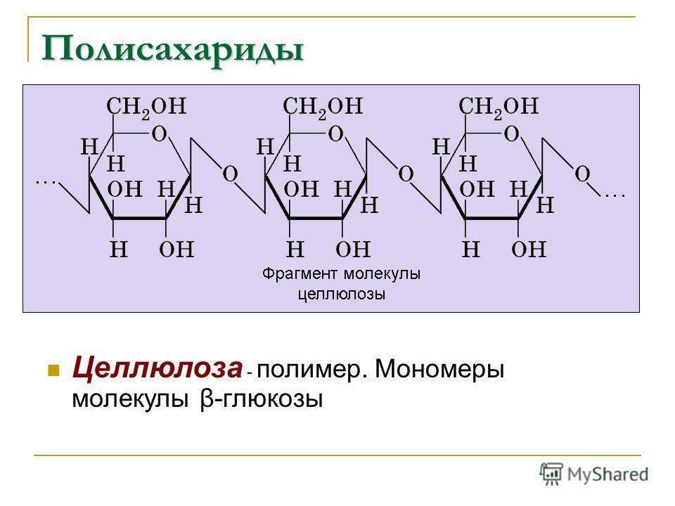 Полисахариды Целлюлоза - полимер. Мономеры молекулы β-глюкозы