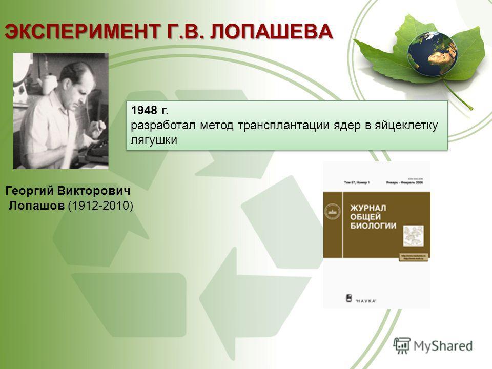 ЭКСПЕРИМЕНТ Г.В. ЛОПАШЕВА Георгий Викторович Лопашов (1912-2010) 1948 г. разработал метод трансплантации ядер в яйцеклетку лягушки 1948 г. разработал метод трансплантации ядер в яйцеклетку лягушки