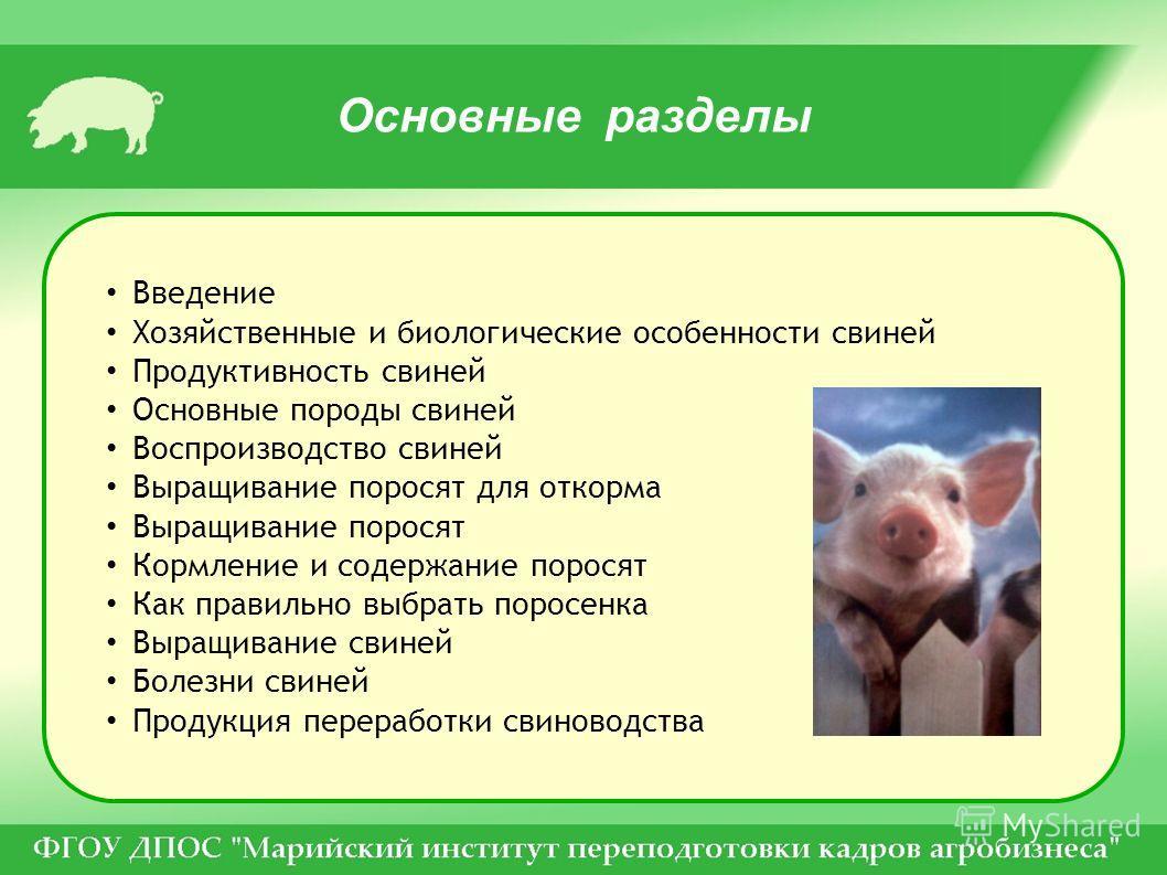 Основные разделы Введение Хозяйственные и биологические особенности свиней Продуктивность свиней Основные породы свиней Воспроизводство свиней Выращивание поросят для откорма Выращивание поросят Кормление и содержание поросят Как правильно выбрать по