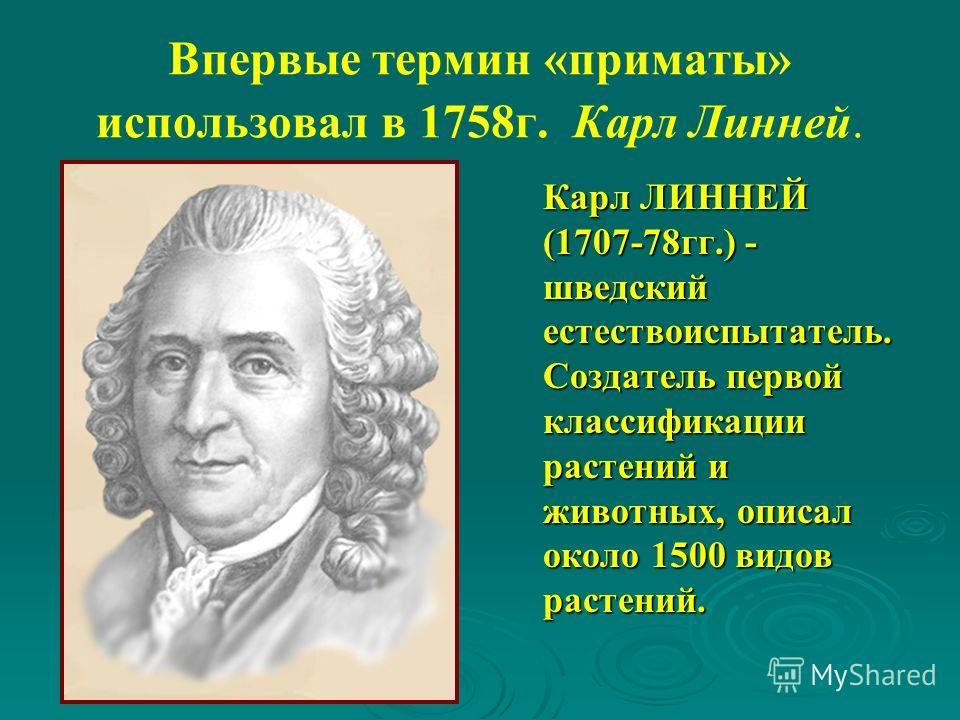 Впервые термин «приматы» использовал в 1758 г. Карл Линней. Карл ЛИННЕЙ (1707-78 гг.) - шведский естествоиспытатель. Создатель первой классификации растений и животных, описал около 1500 видов растений.