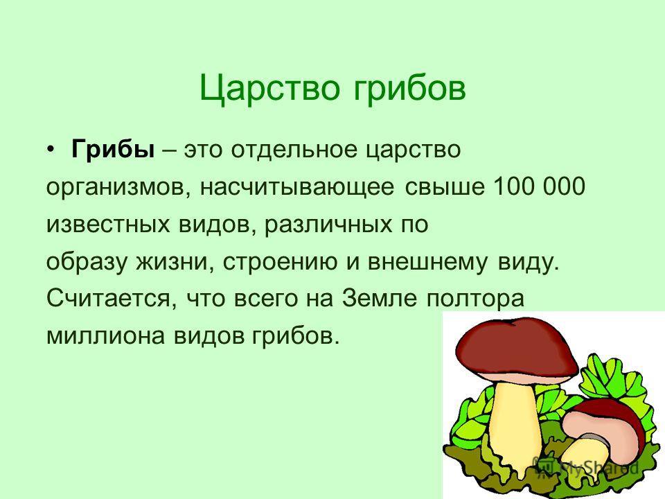 Царство грибов Грибы – это отдельное царство организмов, насчитывающее свыше 100 000 известных видов, различных по образу жизни, строению и внешнему виду. Считается, что всего на Земле полтора миллиона видов грибов.