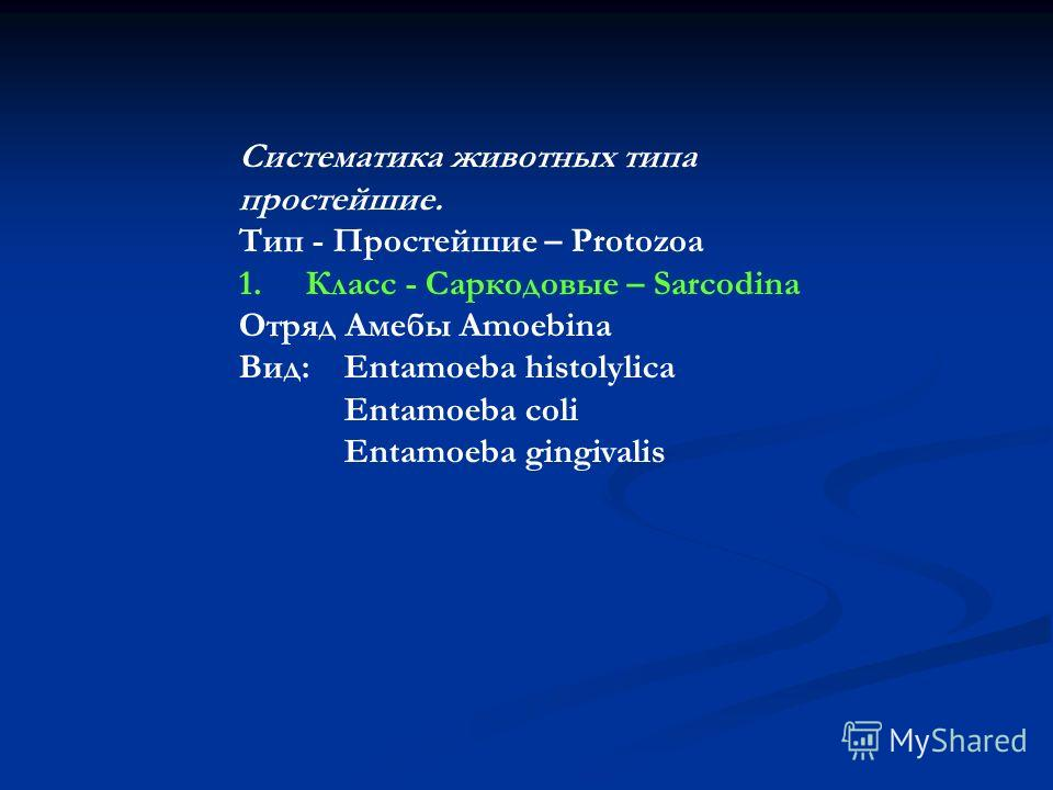 Систематика животных типа простейшие. Тип - Простейшие – Protozoa 1. Класс - Саркодовые – Sarcodina Отряд Амебы Amoebina Вид: Entamoeba histolylica Entamoeba coli Entamoeba gingivalis