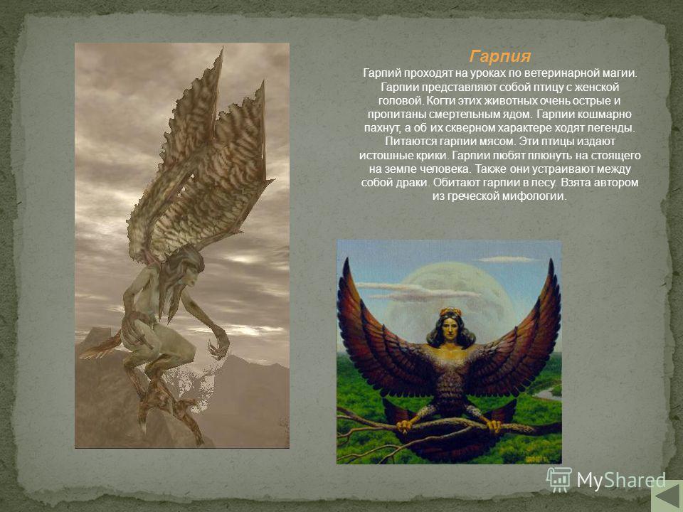 Гарпия Гарпий проходят на уроках по ветеринарной магии. Гарпии представляют собой птицу с женской головой. Когти этих животных очень острые и пропитаны смертельным ядом. Гарпии кошмарно пахнут, а об их скверном характере ходят легенды. Питаются гарпи