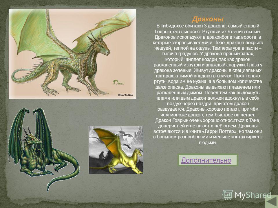 Драконы В Тибидохсе обитают 3 дракона: самый старый Гоярын, его сыновья Ртутный и Ослепительный. Драконов используют в драконболе как ворота, в которые забрасывают мячи. Тело дракона покрыто чешуей, теплой на ощупь. Температура в пасти – тысяча граду
