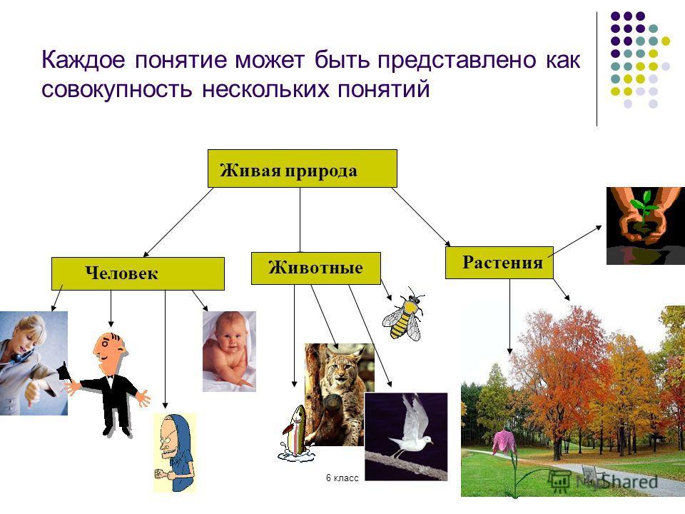Каждое понятие может быть представлено как совокупность нескольких понятий Живая природа Человек Животные Растения