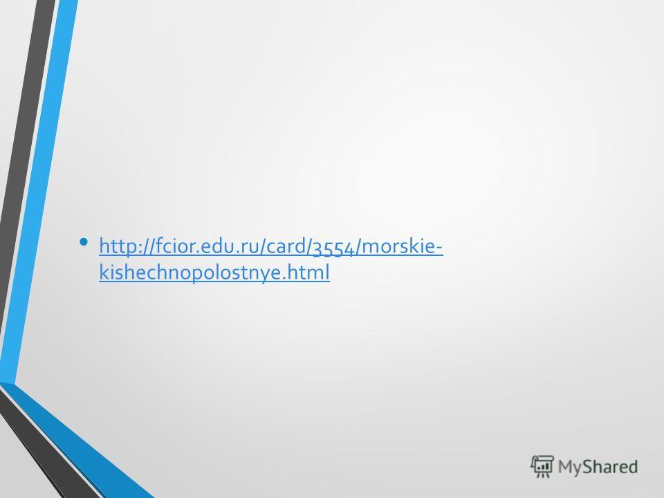 http://fcior.edu.ru/card/3554/morskie- kishechnopolostnye.html http://fcior.edu.ru/card/3554/morskie- kishechnopolostnye.html