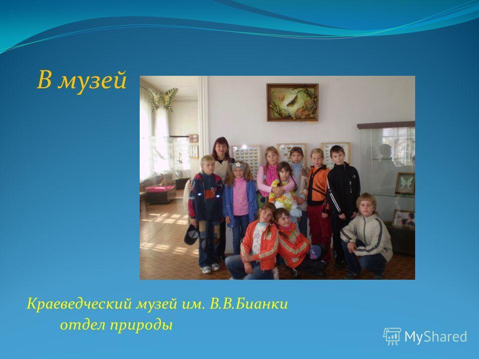В музей Краеведческий музей им. В.В.Бианки отдел природы