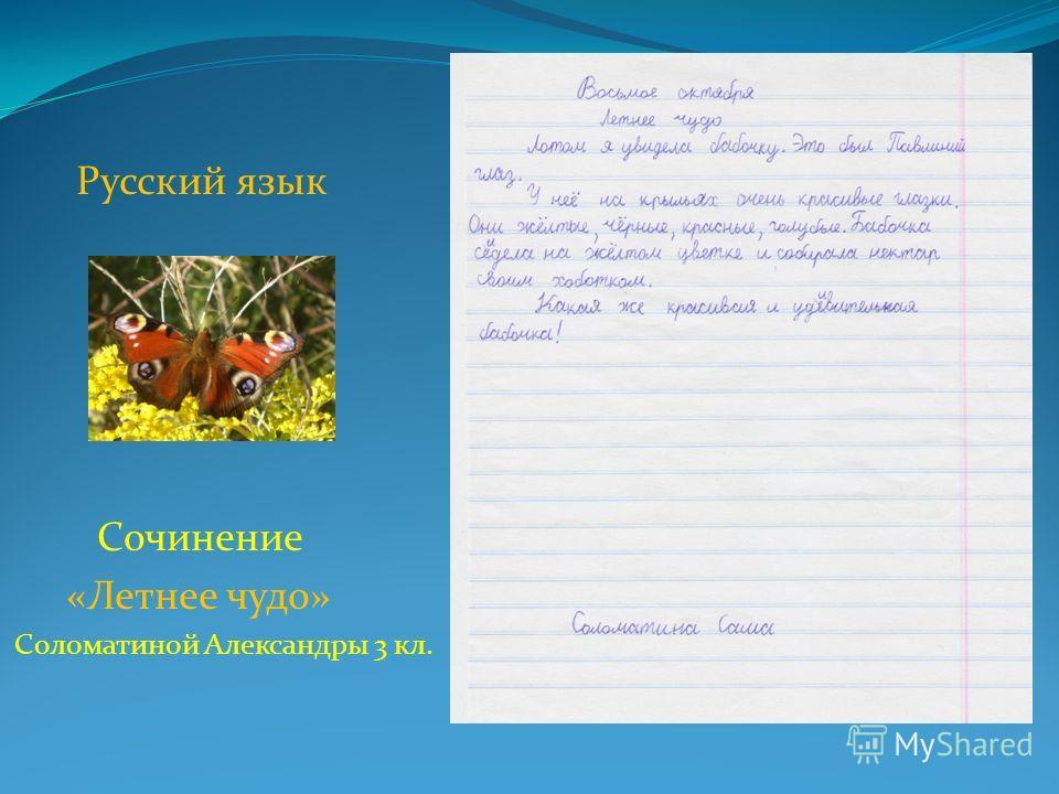 Русский язык Сочинение «Летнее чудо» Соломатиной Александры 3 кл.