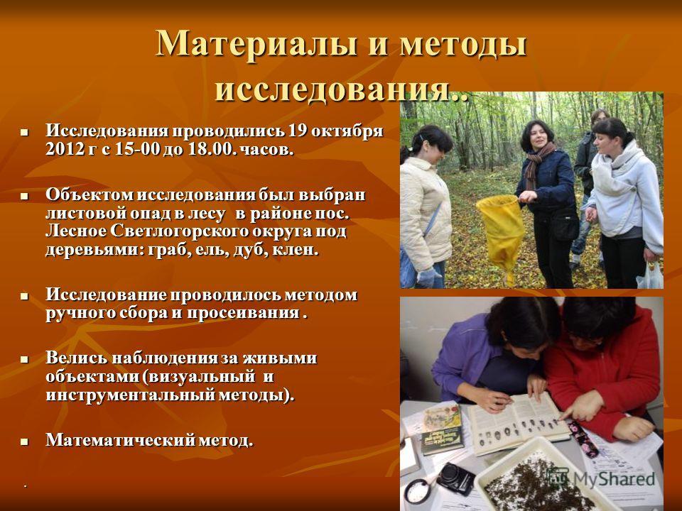 Исследования проводились 19 октября 2012 г с 15-00 до 18.00. часов. Исследования проводились 19 октября 2012 г с 15-00 до 18.00. часов. Объектом исследования был выбран листовой опад в лесу в районе пос. Лесное Светлогорского округа под деревьями: гр