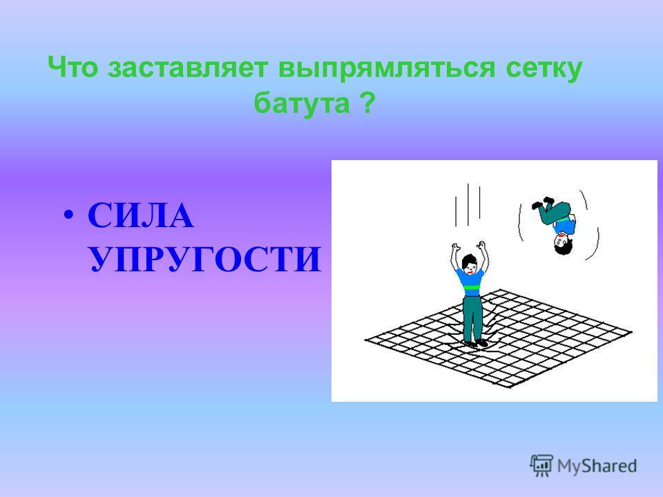 Существует четыре вида силы упругости : силы упругости сила натяжения нити вес тела сила реакции опоры сила Архимеда