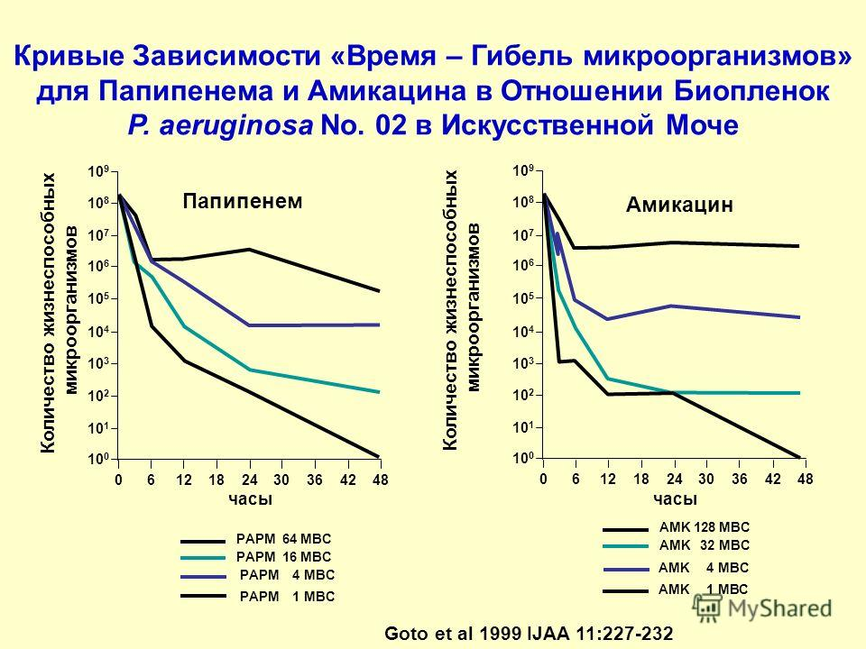 Кривые Зависимости «Время – Гибель микроорганизмов» для Папипенема и Амикацина в Отношении Биопленок P. aeruginosa No. 02 в Искусственной Моче 10 9 10 8 10 7 10 6 10 5 10 4 10 3 10 2 10 1 10 0 0612182430364248 часы Папипенем PAPM 64 MBC PAPM 16 MBC P