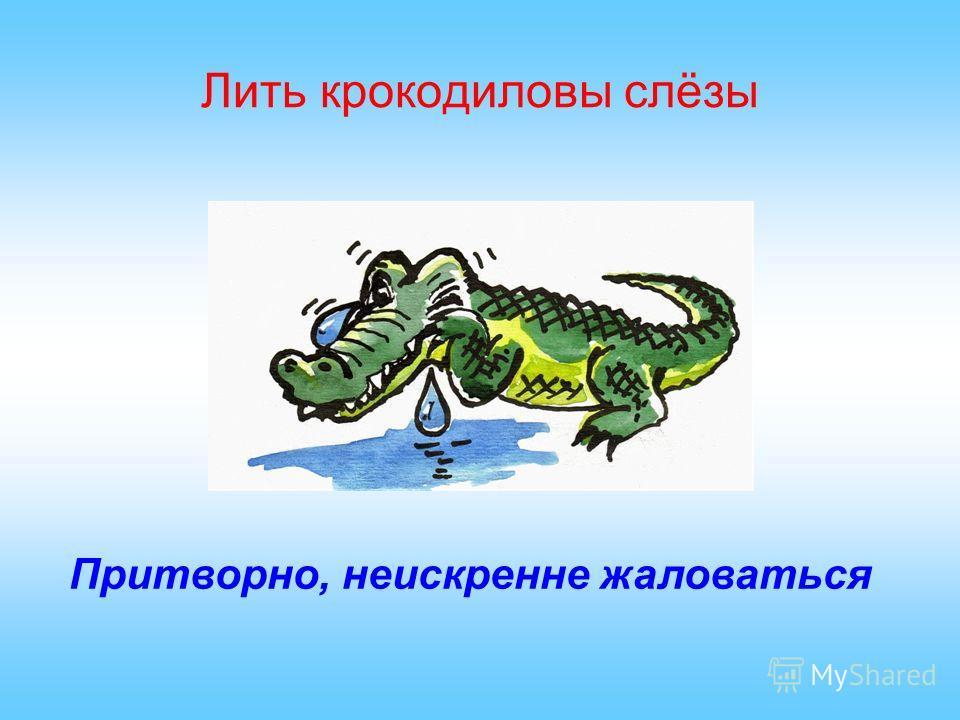 Лить крокодиловы слёзы Притворно, неискренне жаловаться